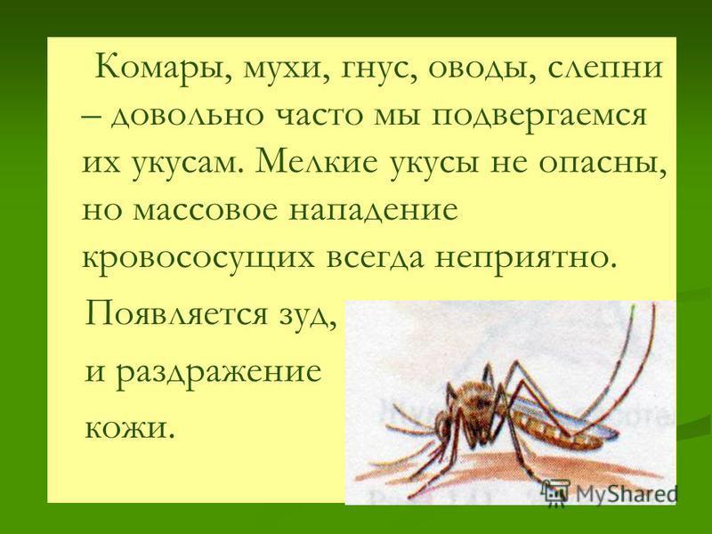 Комары, мухи, гнус, оводы, слепни – довольно часто мы подвергаемся их укусам. Мелкие укусы не опасны, но массовое нападение кровососущих всегда неприятно. Появляется зуд, и раздражение кожи.