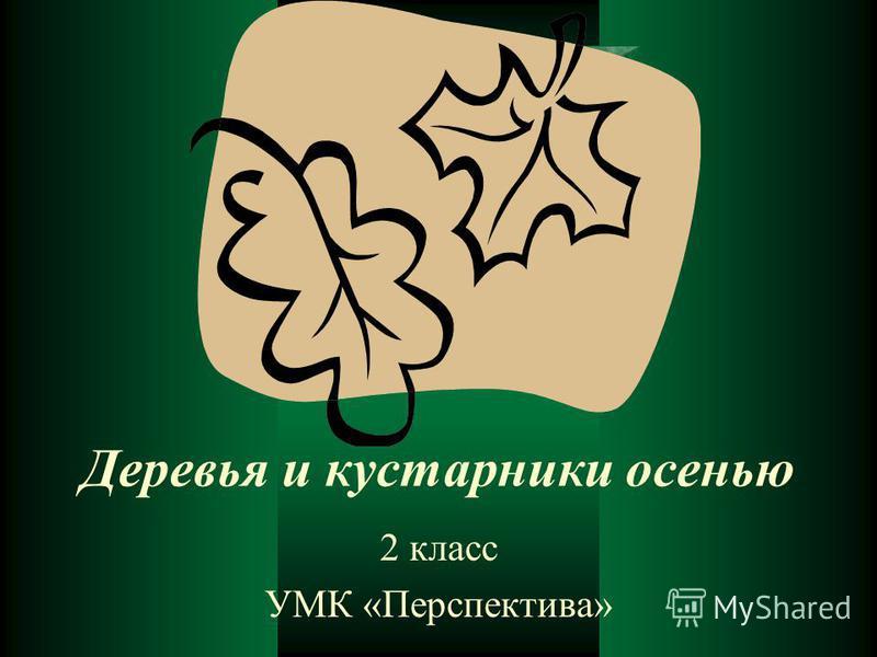Деревья и кустарники осенью 2 класс УМК «Перспектива»
