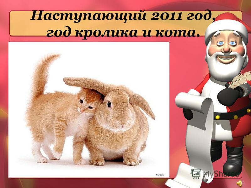 Наступающий 2011 год, год кролика и кота.