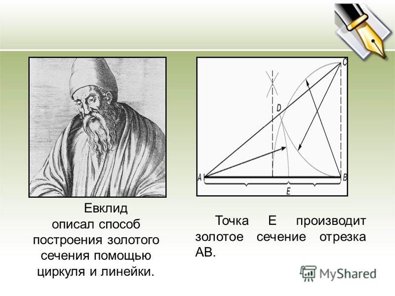 Евклид описал способ построения золотого сечения помощью циркуля и линейки. Точка Е производит золотое сечение отрезка АВ.