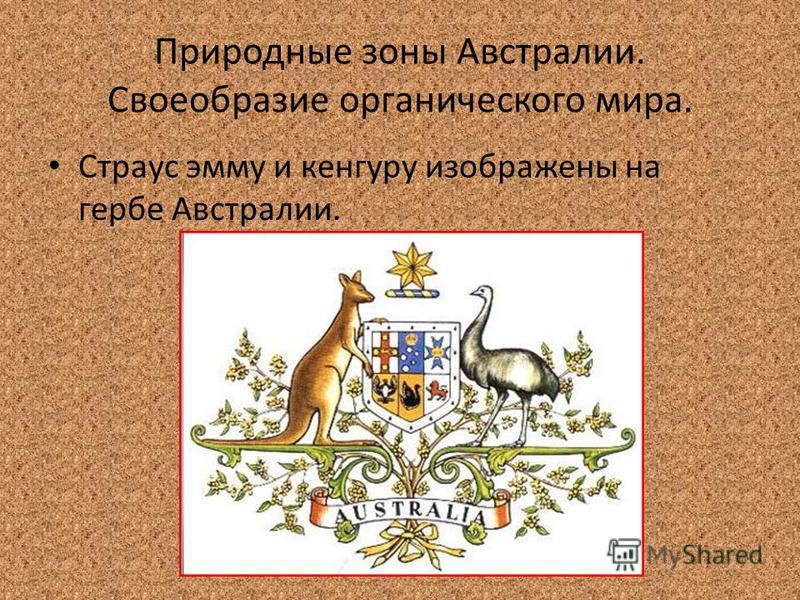Природные зоны Австралии. Своеобразие органического мира. Страус эмму и кенгуру изображены на гербе Австралии.