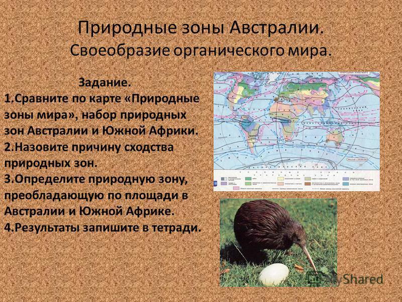 Природные зоны Австралии. Своеобразие органического мира. Задание. 1. Сравните по карте «Природные зоны мира», набор природных зон Австралии и Южной Африки. 2. Назовите причину сходства природных зон. 3. Определите природную зону, преобладающую по пл
