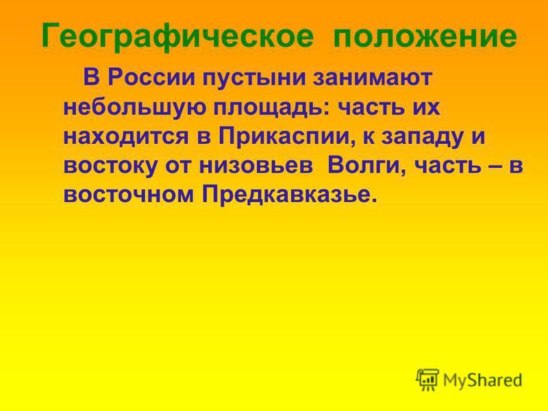 Географическое положение В России пустыни занимают небольшую площадь: часть их находится в Прикаспии, к западу и востоку от низовьев Волги, часть – в восточном Предкавказье.