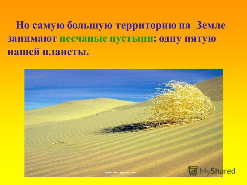 Но самую большую территорию на Земле занимают песчаные пустыни: одну пятую нашей планеты.