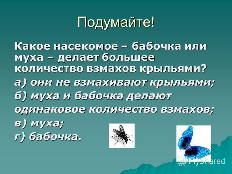 Подумайте! Какое насекомое – бабочка или муха – делает большее количество взмахов крыльями? а) они не взмахивают крыльями; б) муха и бабочка делают одинаковое количество взмахов; в) муха; г) бабочка.