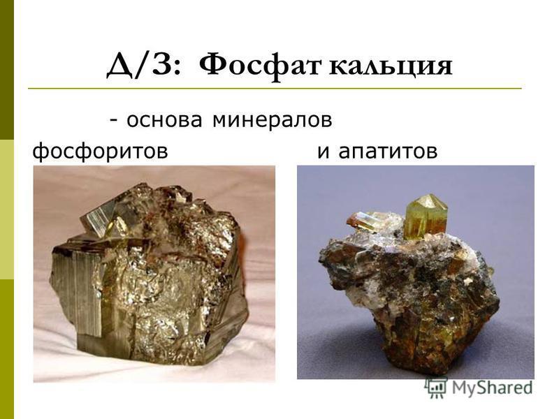 Д/З: Фосфат кальция - основа минералов фосфоритов и апатитов
