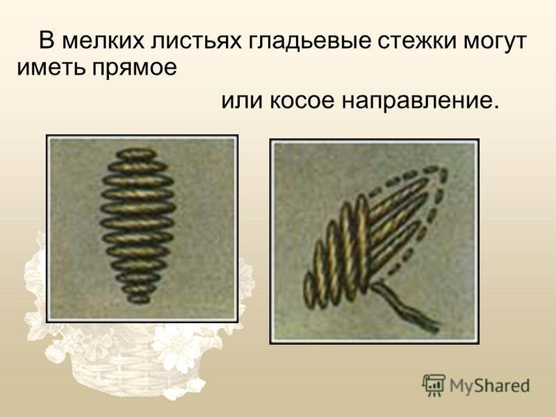 В мелких листьях гладьевые стежки могут иметь прямое или косое направление.