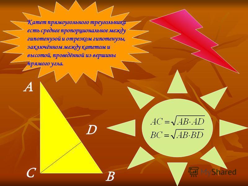 Катет прямоугольного треугольника есть среднее пропорциональное между гипотенузой и отрезком гипотенузы, заключённом между катетом и высотой, проведённой из вершины прямого угла. А В С D