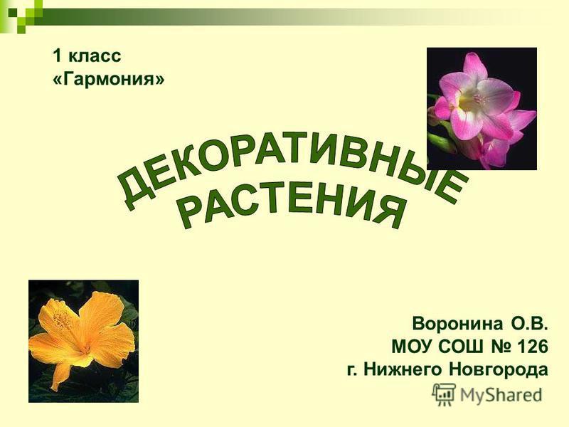 Воронина О.В. МОУ СОШ 126 г. Нижнего Новгорода 1 класс «Гармония»