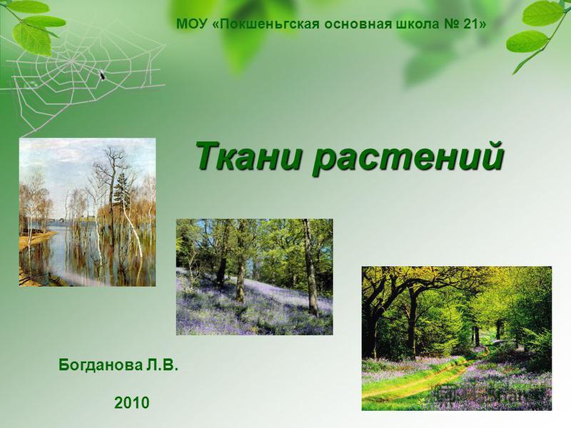 Ткани растений МОУ «Покшеньгская основная школа 21» Богданова Л.В. 2010