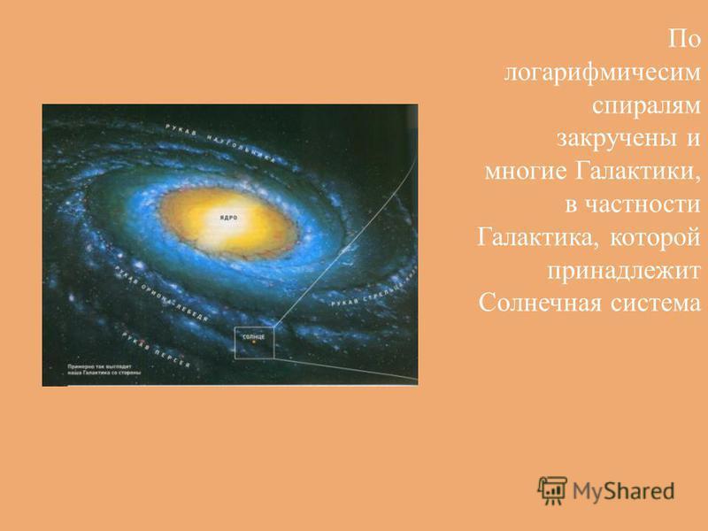 По логарифмичесим спиралям закручены и многие Галактики, в частности Галактика, которой принадлежит Солнечная система