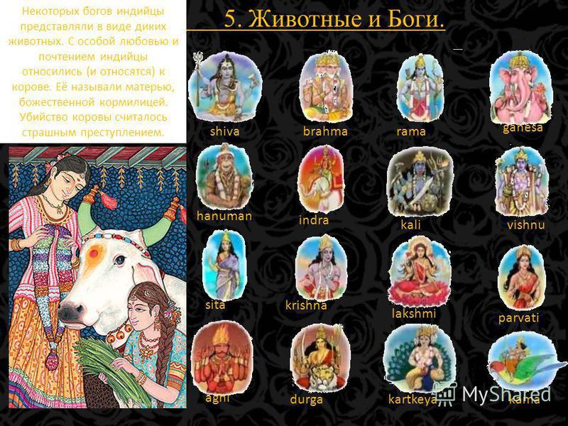 5. Животные и Боги. shivabrahmarama ganesa hanuman indra kalivishnu sita krishna lakshmi parvati agni durgakartkeyakama Некоторых богов индийцы представляли в виде диких животных. С особой любовью и почтением индийцы относились (и относятся) к корове
