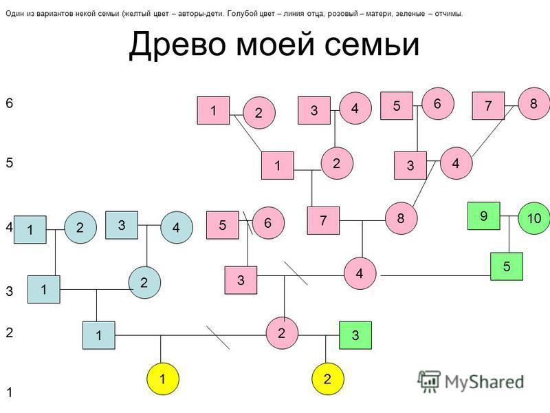 2 – слайд, схема древа. В данном случае – классическая – 1 ребенок в семье – мальчик. Если в вашей семье, еще дети, необходимо скопировать необходимую фигуру и доставить в нужном месте. 1 2 31 42 1 2 3 4 5 6 7 8 1 2 3 4 1