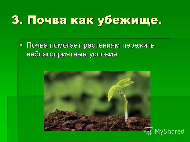 3. Почва как убежище. Почва помогает растениям пережить неблагоприятные условия Почва помогает растениям пережить неблагоприятные условия