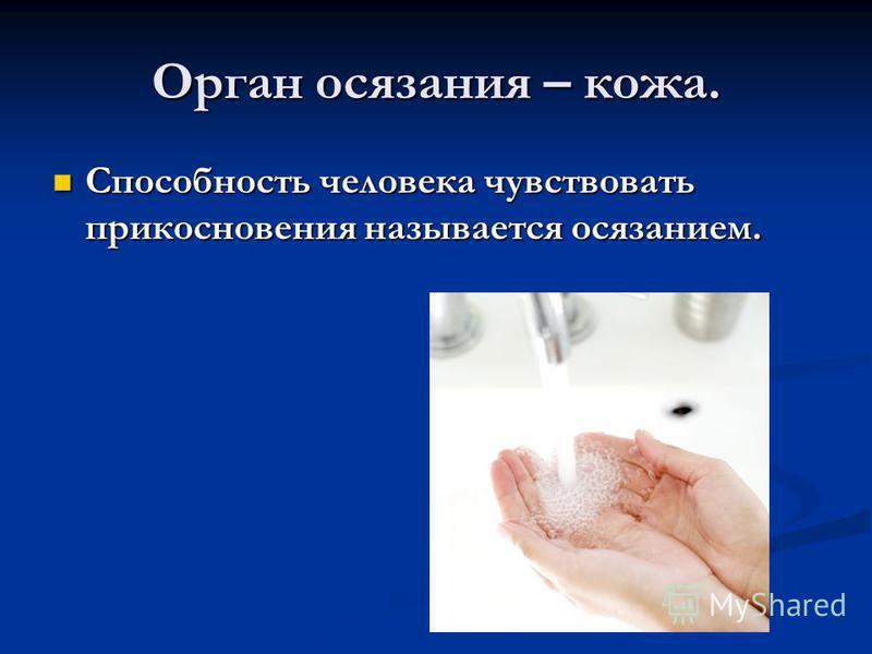 Орган осязания – кожа. Способность человека чувствовать прикосновения называется осязанием. Способность человека чувствовать прикосновения называется осязанием.