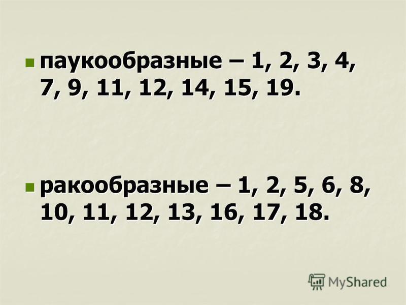 паукообразные – 1, 2, 3, 4, 7, 9, 11, 12, 14, 15, 19. паукообразные – 1, 2, 3, 4, 7, 9, 11, 12, 14, 15, 19. ракообразные – 1, 2, 5, 6, 8, 10, 11, 12, 13, 16, 17, 18. ракообразные – 1, 2, 5, 6, 8, 10, 11, 12, 13, 16, 17, 18.