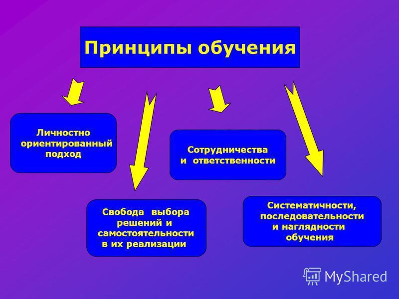 Принципы обучения Личностно ориентированный подход Свобода выбора решений и самостоятельности в их реализации Сотрудничества и ответственности Систематичности, последовательности и наглядности обучения