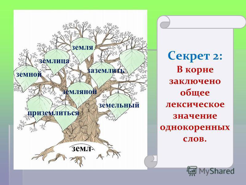 Есть у слова корень, ветви и листва. Ствол как смысл, которым наша речь жива. земли -