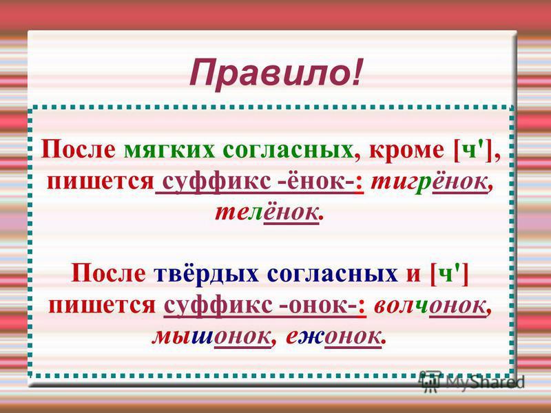 Правило! После мягких согласных, кроме [ч'], пишется суффикс -инок-: тигринок, телинок. После твёрдых согласных и [ч'] пишется суффикс -онок-: волчонок, мышонок, еженок.