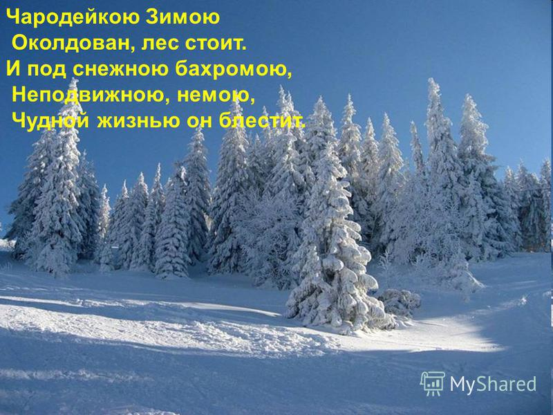 Чародейкою Зимою Околдован, лес стоит. И под снежною бахромою, Неподвижною, немою, Чудной жизнью он блестит.