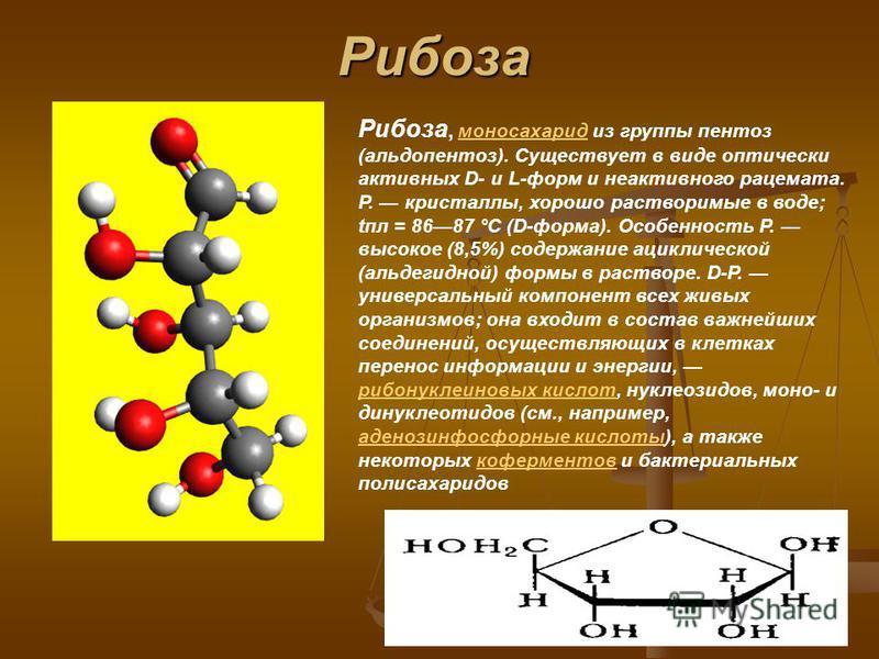 Рибоза Pибоза, моносахарид из группы пентоз (альдопентоз). Существует в виде оптически активных D- и L-форм и неактивного рацемата. Р. кристаллы, хорошо растворимые в воде; апл = 8687 °C (D-форма). Особенность Р. высокое (8,5%) содержание ациклическо