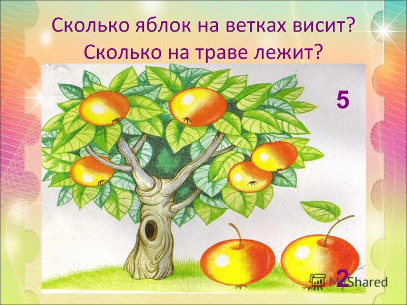 Сколько яблок на ветках висит? Сколько на траве лежит? 5252