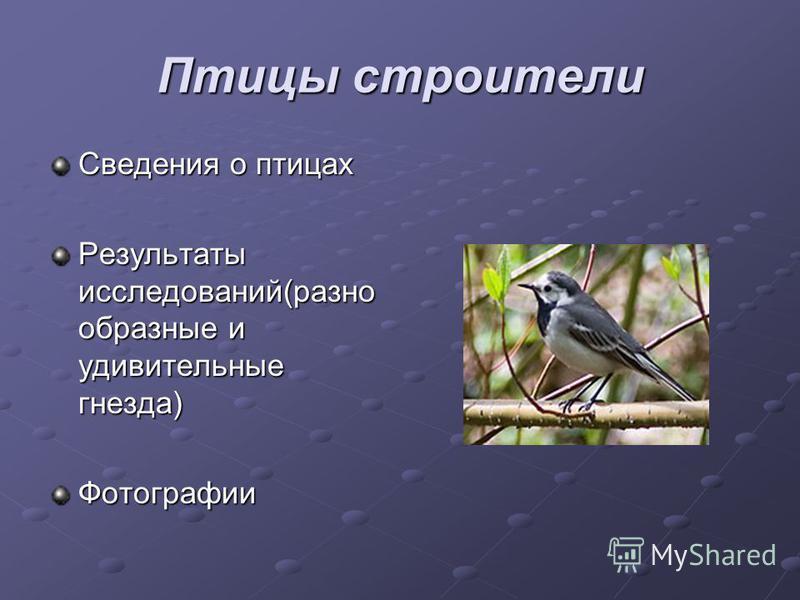 Птицы строители Сведения о птицах Результаты исследований(разно образные и удивительные гнезда) Фотографии
