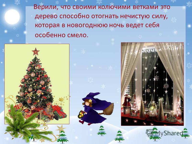Верили, что своими колючими ветками это дерево способно отогнать нечистую силу, которая в новогоднюю ночь ведет себя особенно смело.