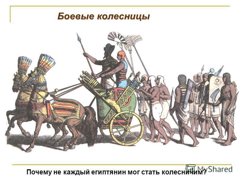 Боевые колесницы Почему не каждый египтянин мог стать колесничим?