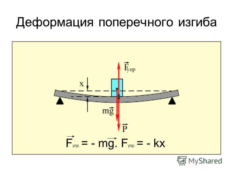 Деформация поперечного изгиба F упр. = - mg. F упр. = - kx