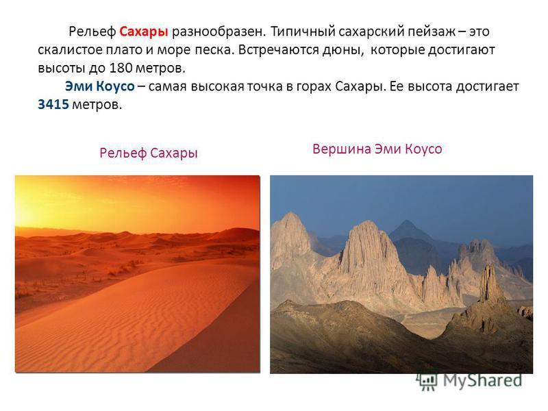 Рельеф Сахары разнообразен. Типичный сахарский пейзаж – это скалистое плато и море песка. Встречаются дюны, которые достигают высоты до 180 метров. Эми Коусо – самая высокая точка в горах Сахары. Ее высота достигает 3415 метров. Вершина Эми Коусо Рел