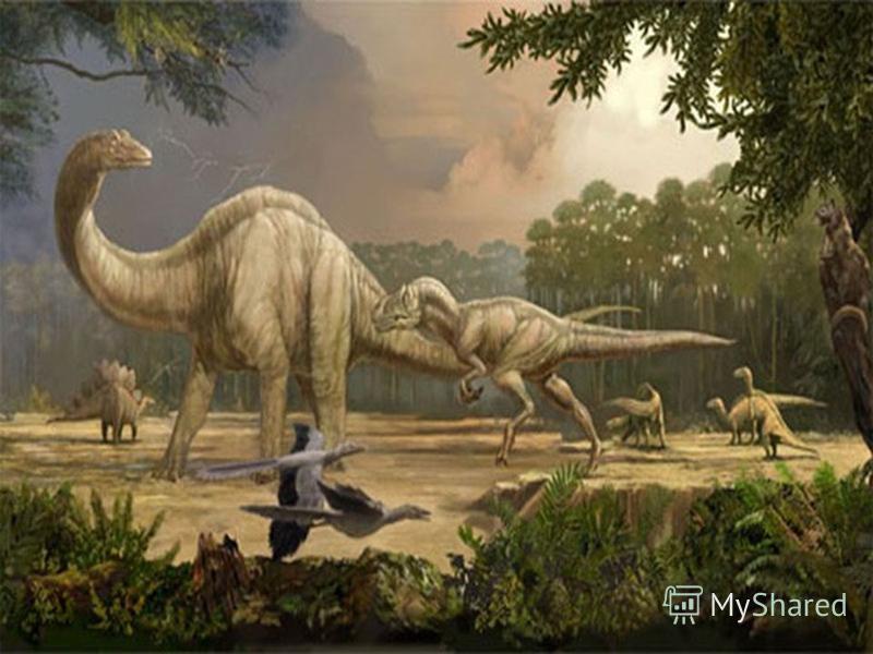 Многие рептилии имели очень большие размеры. Чем больше размеры животного, тем более длительный период взросления детёныша, тем больше вероятность погибнуть от зубов хищников. Нападение было более эффективно в утренние часы, когда у холоднокровных ре