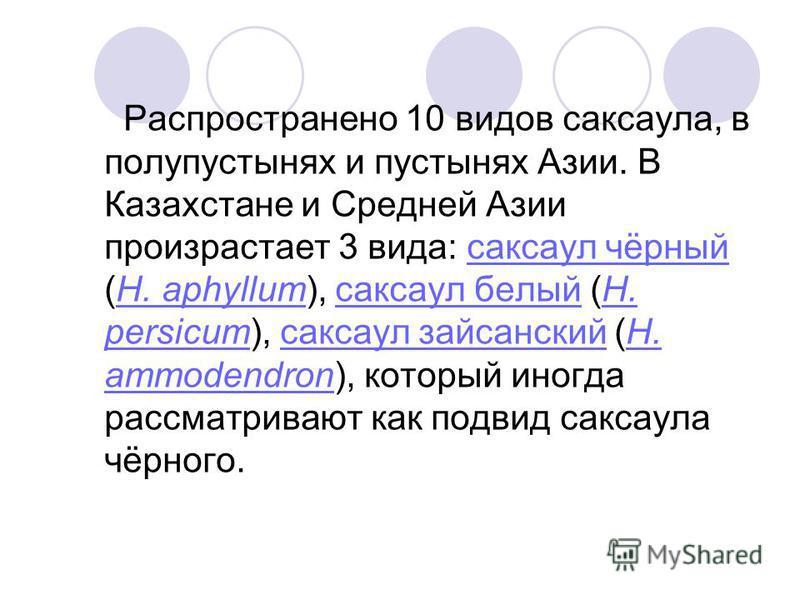 Распространено 10 видов саксаула, в полупустынях и пустынях Азии. В Казахстане и Средней Азии произрастает 3 вида: саксаул чёрный (H. aphyllum), саксаул белый (H. persicum), саксаул зайсанский (H. ammodendron), который иногда рассматривают как подвид