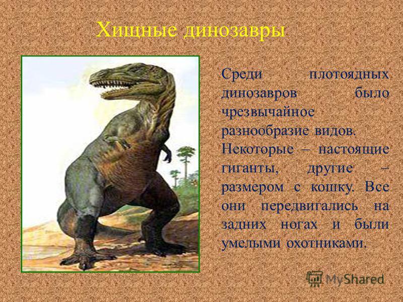 Среди плотоядных динозавров было чрезвычайное разнообразие видов. Некоторые – настоящие гиганты, другие – размером с кошку. Все они передвигались на задних ногах и были умелыми охотниками. Хищные динозавры
