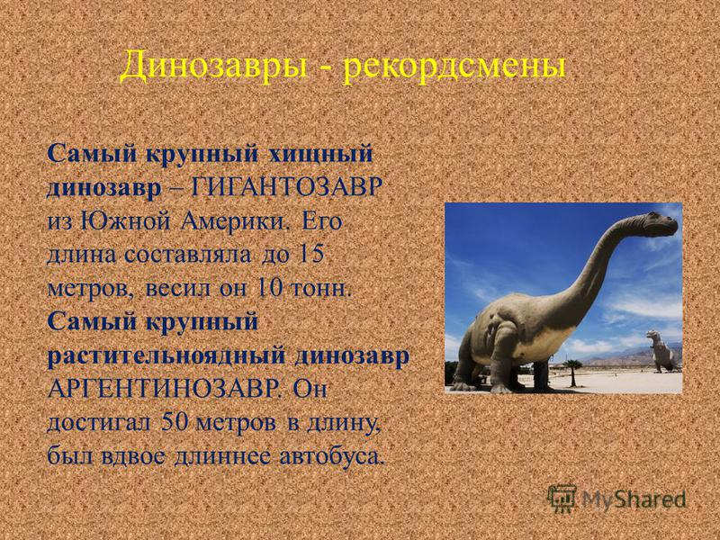 Динозавры - рекордсмены Самый крупный хищный динозавр – ГИГАНТОЗАВР из Южной Америки. Его длина составляла до 15 метров, весил он 10 тонн. Самый крупный растительноядный динозавр АРГЕНТИНОЗАВР. Он достигал 50 метров в длину, был вдвое длиннее автобус