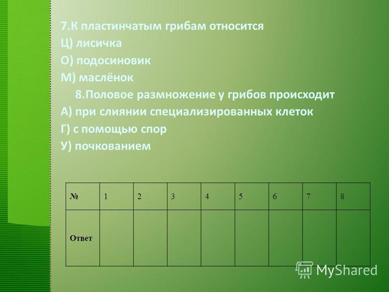 12345678 Ответ