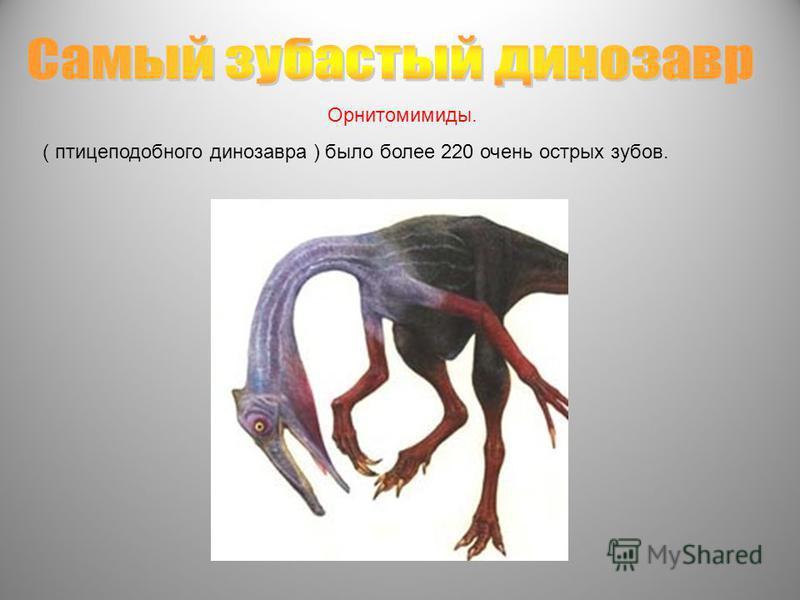 Орнитомимиды. ( птицеподобного динозавра ) было более 220 очень острых зубов.