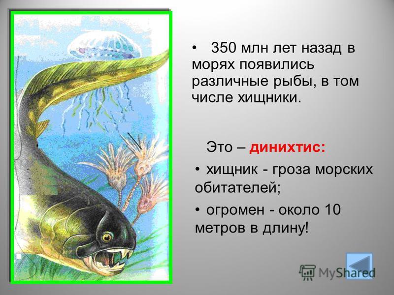 Это – динихтис: хищник - гроза морских обитателей; огромен - около 10 метров в длину! 350 млн лет назад в морях появились различные рыбы, в том числе хищники.
