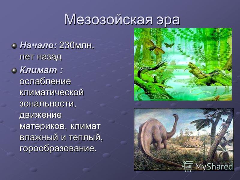 Мезозойская эра Начало: 230 млн. лет назад Климат : ослабление климатической зональности, движение материков, климат влажный и теплый, горообразование.