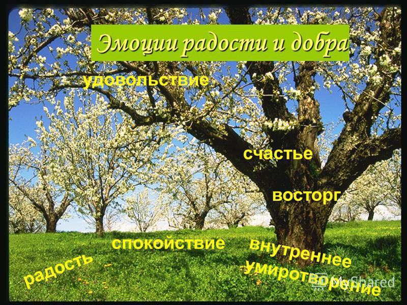 радость удовольствие внутреннее умиротворение спокойствие восторг счастье Эмоции радости и добра