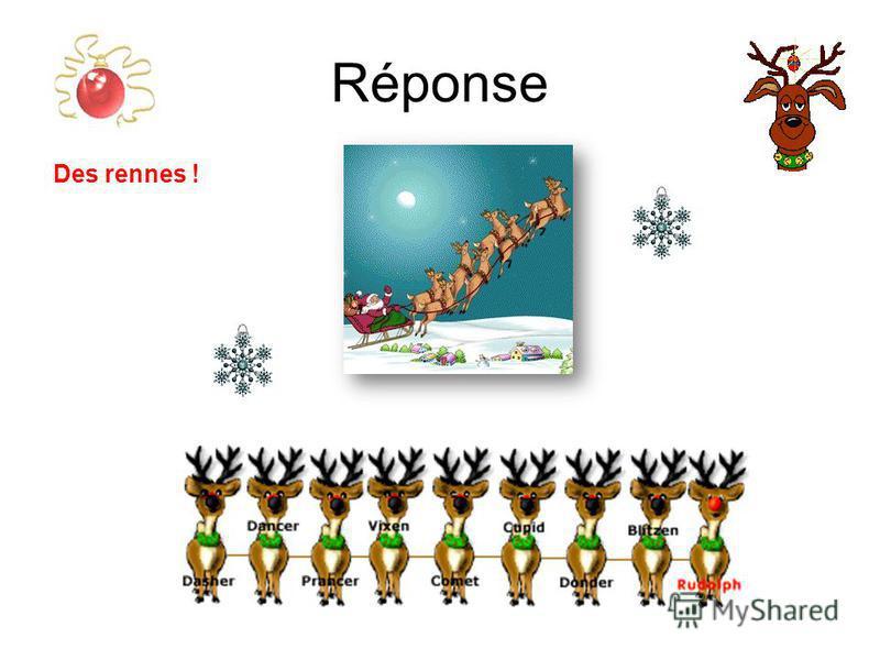 Réponse Des rennes !