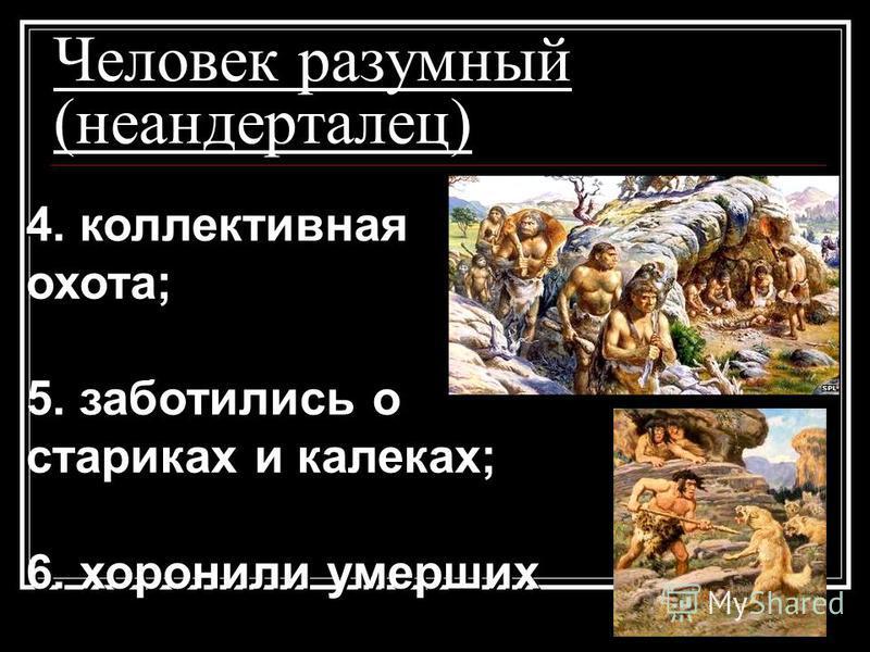 Человек разумный (неандерталец) 4. коллективная охота; 5. заботились о стариках и калеках; 6. хоронили умерших 4. коллективная охота; 5. заботились о стариках и калеках; 6. хоронили умерших