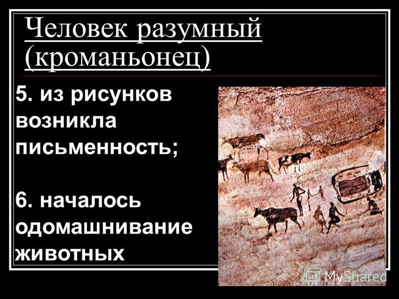Человек разумный (кроманьонец) 5. из рисунков возникла письменность; 6. началось одомашнивание животных 5. из рисунков возникла письменность; 6. началось одомашнивание животных