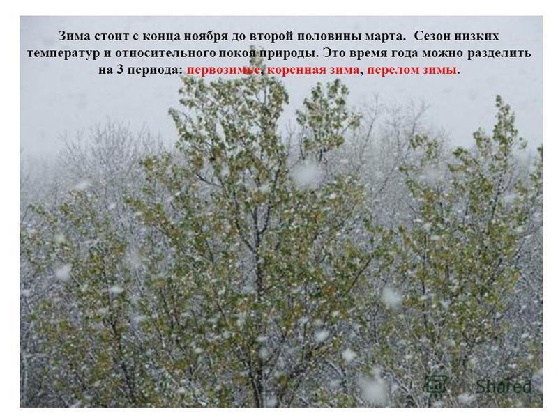 Зима стоит с конца ноября до второй половины марта. Сезон низких температур и относительного покоя природы. Это время года можно разделить на 3 периода: первозимье, коренная зима, перелом зимы.
