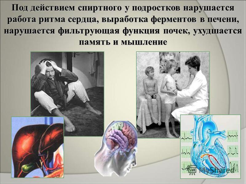 Под действием спиртного у подростков нарушается работа ритма сердца, выработка ферментов в печени, нарушается фильтрующая функция почек, ухудшается память и мышление