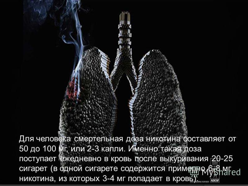 Для человека смертельная доза никотина составляет от 50 до 100 мг, или 2-3 капли. Именно такая доза поступает ежедневно в кровь после выкуривания 20-25 сигарет (в одной сигарете содержится примерно 6-8 мг никотина, из которых 3-4 мг попадает в кровь)