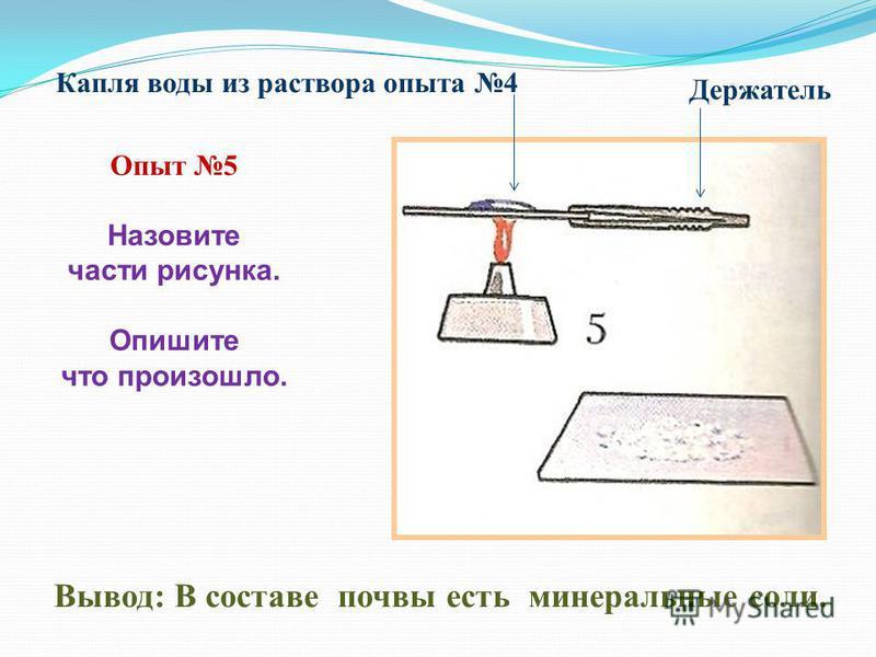 Вывод: В составе почвы есть минеральные соли. Опыт 5 Назовите части рисунка. Опишите что произошло. Капля воды из раствора опыта 4 Держатель