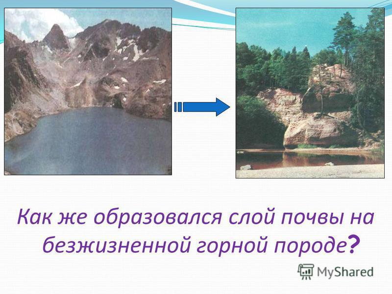 Как же образовался слой почвы на безжизненной горной породе ?
