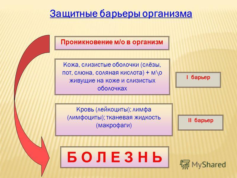 Защитные барьеры организма Проникновение м/о в организм Кожа, слизистые оболочки (слёзы, пот, слюна, соляная кислота) + м\о живущие на коже и слизистых оболочках Кровь (лейкоциты); лимфа (лимфоциты); тканевая жидкость (макрофаги) Б О Л Е З Н Ь I барь