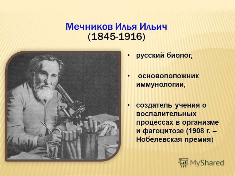 Мечников Илья Ильич (1845-1916) русский биолог, основоположник иммунологии, создатель учения о воспалительных процессах в организме и фагоцитозе (1908 г. – Нобелевская премия)